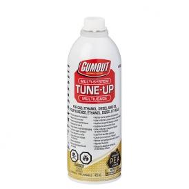 شوینده کامل سیستم سوخت رسانی گام اوت Tune-Up